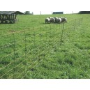 Filet moutons TitanNet